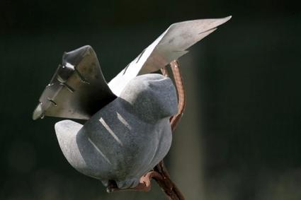 Stoneage house sparrow